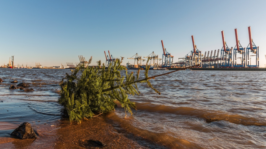 Weihnachten_Hafen